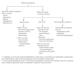 Exercise Related Syncope In The Young Athlete Reassurance