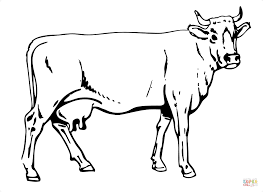 Small Picture Cow Coloring Pages Picture 3403
