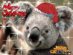 Merry christmas koala Picture #127215391 | Blingee.com