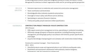 Construction Assistant Project Manager Resume Assistant Project Coordinator Sample Resume Podarki Co
