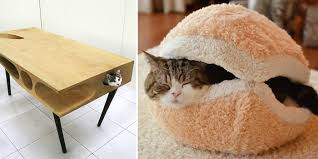 images furniture design. 25 Awesome Furniture Design Ideas For Cat Lovers Images