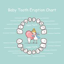Tooth Fairy Chart Stock Illustrations 16 Tooth Fairy Chart