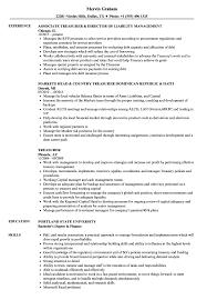 ... Treasurer Resume Sample as Image file