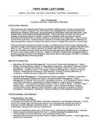 Vice President Resume Template Premium Resume Samples Example