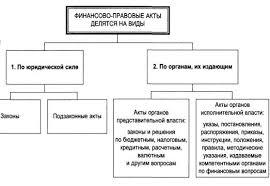 Реферат Финансово правовые акты Такую же форму имеют финансово правовые акты финансово кредитных органов При этом инструкции относятся к нормативным финансово правовым актам