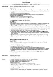 Insurance Underwriter Resume Resume Sample