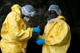 Virus und erkrankung von menschen wurden erstmals 1967 in marburg identifiziert und traten seither mehrfach in aller welt auf. First West African Case Of Deadly Marburg Virus Detected Who Health The Jakarta Post
