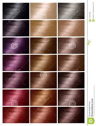 Bright Hair Color Chart Color Chart For Hair Dye Tints Hair Color Palette With A