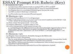 rubrics biology essays and ap  rubrics biology essays and ap rubrics biology essays and ap