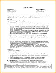 How To Write Work Experience In Cv Example Job Resume Samples