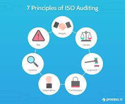 Iso 19011 2018 Basics 8 Free Management System Audit