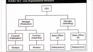 What Are The Different Types Of Organizational Charts 8 Types Of Organisational Structures Their Advantages And