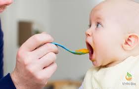 Thực đơn ăn dặm lý tưởng cho bé 6 tháng tuổi-Viện Dinh dưỡng VHN Bio
