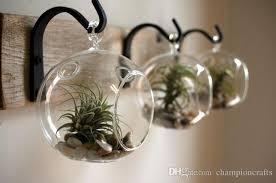 2018 orb terrarium garden planters hanging glass succulent terrarium air plant holders home decor from championcrafts 13 39 dhgate com