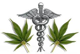 the marijuana papers magazine medical marijuana is rapidly gaining statewide acceptance while becoming a blockbuster drug annual s near 2 billion extensive research for this