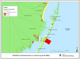 Njdep Division Of Water Monitoring And Standards
