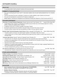 13 Fresh American Resume Format Pictures Professional Resume Templates