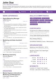 ... New Resume Templates 2017 Professional Rsum Templates For Your Dream  Job Ideas ...