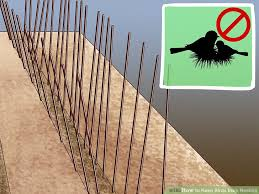 prevent birds from nesting. Fine Birds Image Titled Keep Birds From Nesting Step 1 Inside Prevent From WikiHow