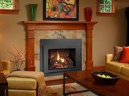 gas fireplaces gas fireplace inserts fireplace xtrordinair