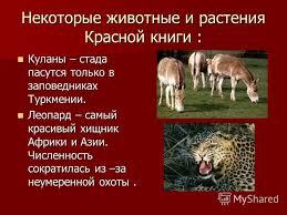 Презентация на тему Красная книга Мы друзья природы Богданова  6 Некоторые
