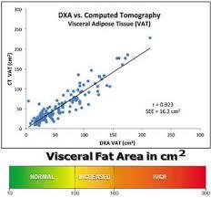 Dexa Body Composition Visceral Fat Testing San Antonio