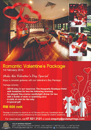 valentine s day package