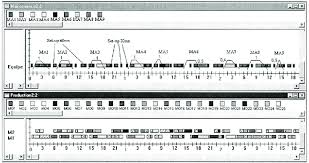 Gantt Chart With Preventive And Condition Based Maintenance