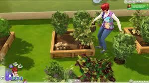 gardening skill guide