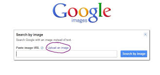 Searching Google For Specific Images
