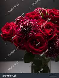 Scabiosa Floral Design Red Roses Scabiosa Floral Arrangement Glass Nature Stock Image