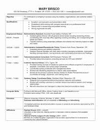 Chronological Resume Format New Chronological Resume Example A