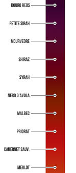 Red Wine Boldness Chart Defining Full Bodied Red Wines Wine Folly