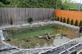 build backyard ponds