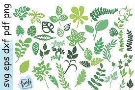 Mirror, dryer, leaf, mascara, blade, girl, perfume, drop, eye, scissors, nail polish, sun. Leaf Svg Bundle Leaf Clipart Leaves Template Svg 536095 Svgs Design Bundles
