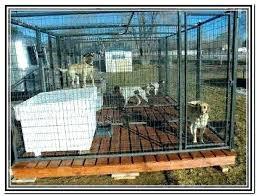 indoor kennel flooring simple dog kennel flooring outdoor dog kennel flooring ideas dog for indoor dog