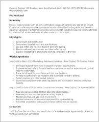 Journeyman Welder Sample Resume Custom Entry Level Welding Resume Examplesentry Level Welder Resume