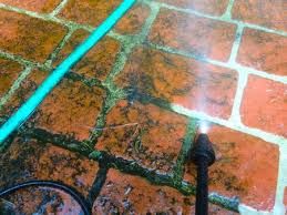 cleaning moss on patio