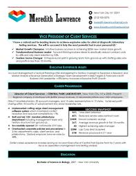 Executive Resume Samples Unique Executive Resume Samples Top Resume Samples Professional Resume