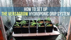 how to set up a hydroponic drip system for indoor gardening versagrow growace com you