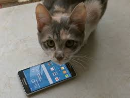 Mobile-review.com Билайн, LTE Advanced. Щупаем «живьём»