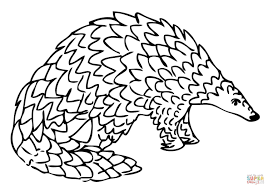 Giant Pangolin coloring page | Free Printable Coloring Pages