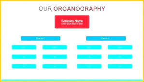 Company Ownership Chart Company Structure Template Word Bookmylook Co