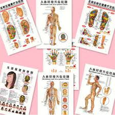 Acupressure Chart Details About 7pcs English Acupuncture Meridian Acupressure Points Posters Chart Wall Map Su
