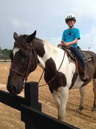 Dream Catchers Horse Ranch riding lessons Picture of DreamCatcher Horse Ranch and Rescue 49