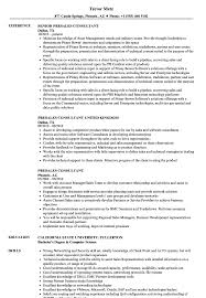 Presales Consultant Resume Samples Velvet Jobs