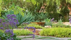 Small Picture ideas for a drought tolerant garden