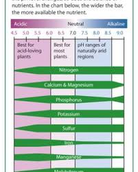 Alkaline Ph Level Chart The Four Things You Need To Know About Soil Ph Finegardening