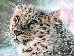 realistic drawings of animals in color. Realistic Drawings Of Animals In Color