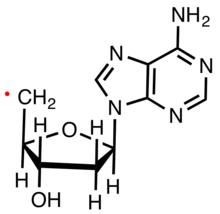 Radical Chemistry Wikipedia